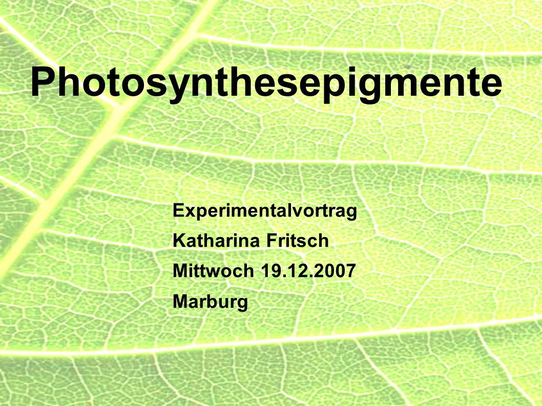 Photosynthesepigmente Experimentalvortrag Katharina Fritsch Mittwoch 19.12.2007 Marburg