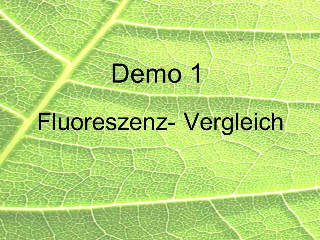 Demo 1 Fluoreszenz- Vergleich