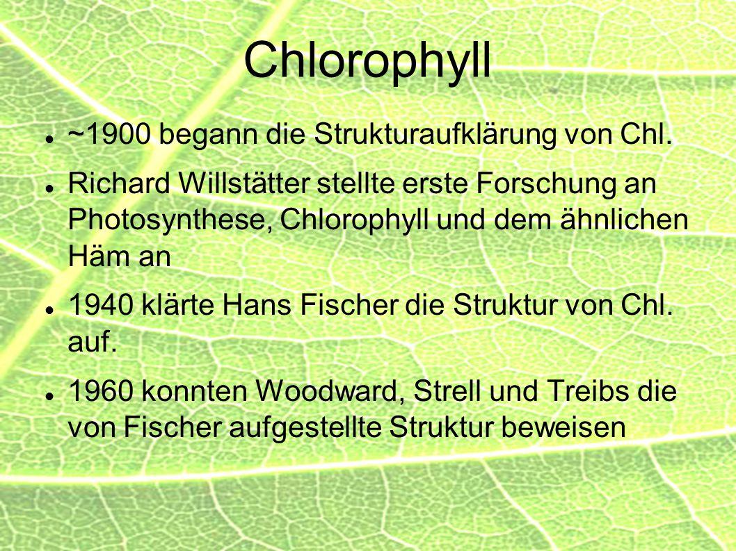 Chlorophyll ~1900 begann die Strukturaufklärung von Chl. Richard Willstätter stellte erste Forschung an Photosynthese, Chlorophyll und dem ähnlichen H