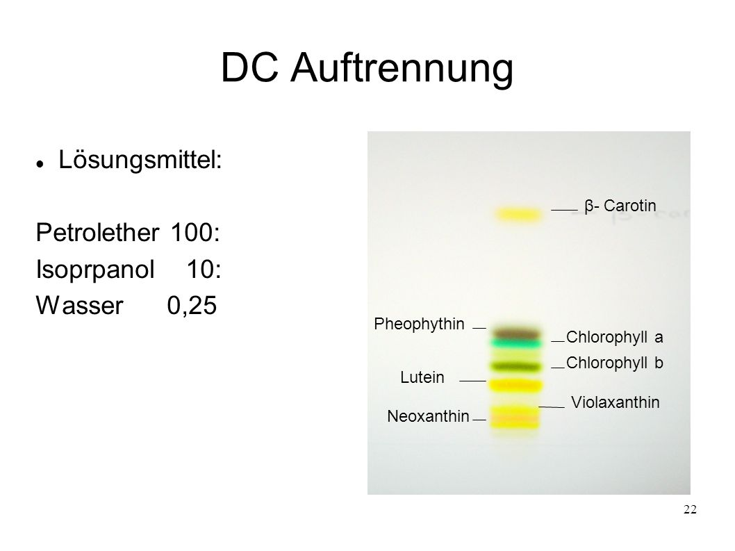 22 DC Auftrennung Lösungsmittel: Petrolether 100: Isoprpanol 10: Wasser 0,25 β- Carotin Pheophythin Chlorophyll a Chlorophyll b Lutein Violaxanthin Ne