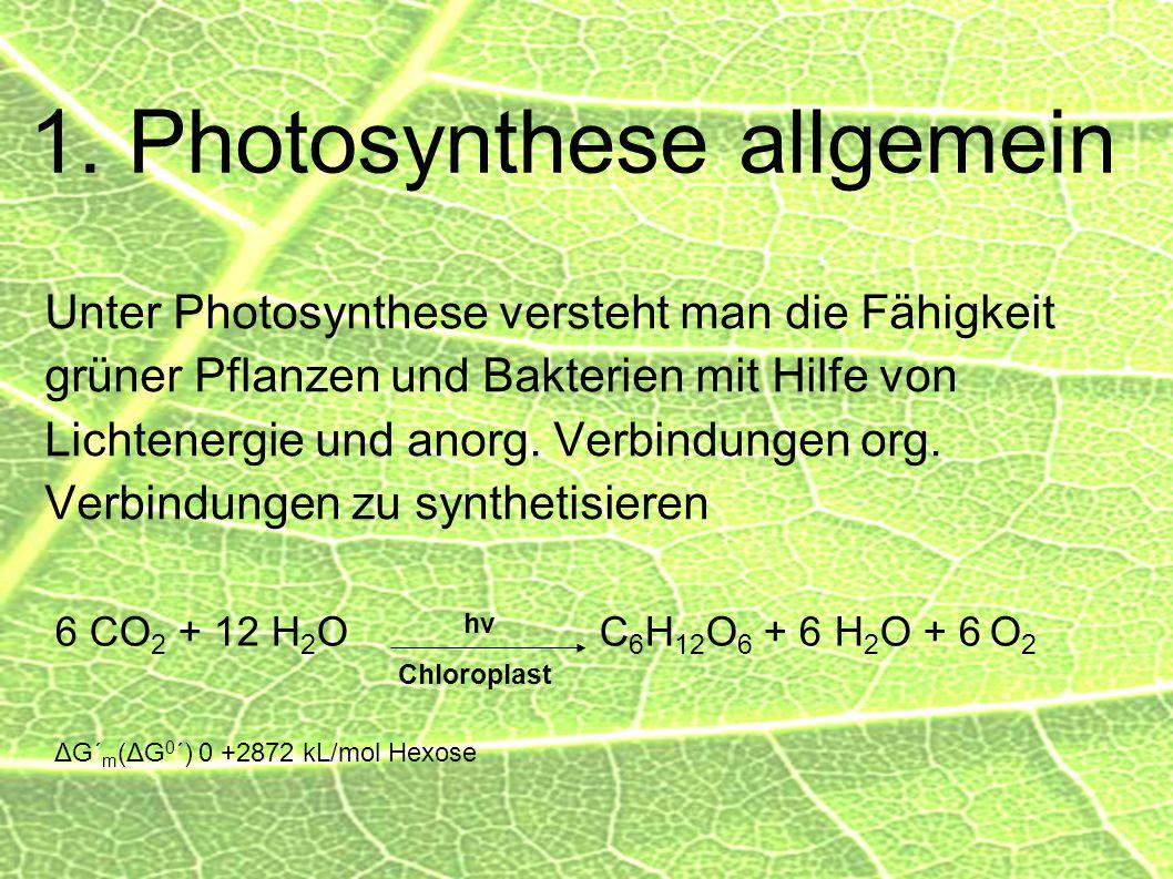 1. Photosynthese allgemein Unter Photosynthese versteht man die Fähigkeit grüner Pflanzen und Bakterien mit Hilfe von Lichtenergie und anorg. Verbindu