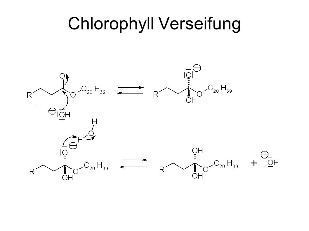 Chlorophyll Verseifung