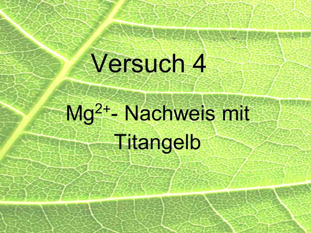 38 Versuch 4 Mg 2 + - Nachweis mit Titangelb
