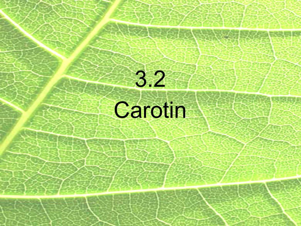 3.2 Carotin