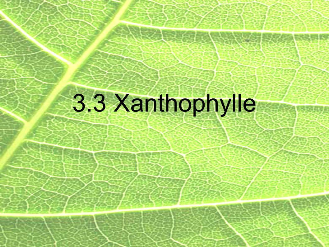 3.3 Xanthophylle