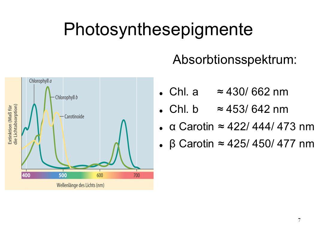 7 Photosynthesepigmente Chl. a ≈ 430/ 662 nm Chl. b ≈ 453/ 642 nm α Carotin ≈ 422/ 444/ 473 nm β Carotin ≈ 425/ 450/ 477 nm Absorbtionsspektrum: