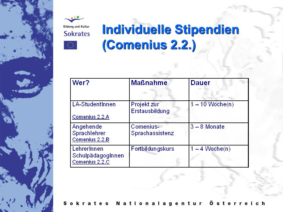 Individuelle Stipendien (Comenius 2.2.)