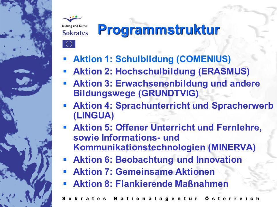 Programmstruktur   Aktion 1: Schulbildung (COMENIUS)   Aktion 2: Hochschulbildung (ERASMUS)   Aktion 3: Erwachsenenbildung und andere Bildungswege (GRUNDTVIG)   Aktion 4: Sprachunterricht und Spracherwerb (LINGUA)   Aktion 5: Offener Unterricht und Fernlehre, sowie Informations- und Kommunikationstechnologien (MINERVA)   Aktion 6: Beobachtung und Innovation   Aktion 7: Gemeinsame Aktionen   Aktion 8: Flankierende Maßnahmen