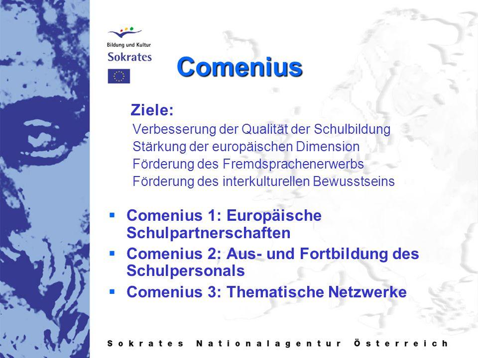 Comenius Ziele: Verbesserung der Qualität der Schulbildung Stärkung der europäischen Dimension Förderung des Fremdsprachenerwerbs Förderung des interkulturellen Bewusstseins   Comenius 1: Europäische Schulpartnerschaften   Comenius 2: Aus- und Fortbildung des Schulpersonals   Comenius 3: Thematische Netzwerke