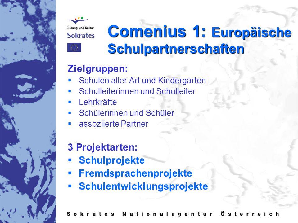 Comenius 1: Europäische Schulpartnerschaften Zielgruppen:   Schulen aller Art und Kindergärten   Schulleiterinnen und Schulleiter   Lehrkräfte   Schülerinnen und Schüler   assoziierte Partner 3 Projektarten:   Schulprojekte   Fremdsprachenprojekte   Schulentwicklungsprojekte