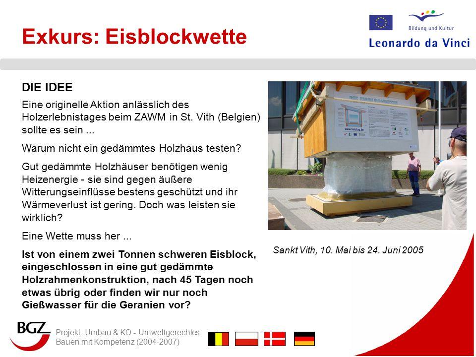 Projekt: Umbau & KO - Umweltgerechtes Bauen mit Kompetenz (2004-2007) Exkurs: Eisblockwette DIE IDEE Eine originelle Aktion anlässlich des Holzerlebnistages beim ZAWM in St.