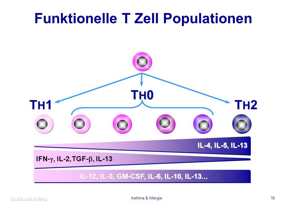 Zurück zum Anfang Asthma & Allergie16 TH2TH2TH2TH2 TH1TH1TH1TH1 IL-12, IL-3, GM-CSF, IL-6, IL-10, IL-13... IL-4, IL-5, IL-13 IFN- , IL-2,TGF- , IL-1