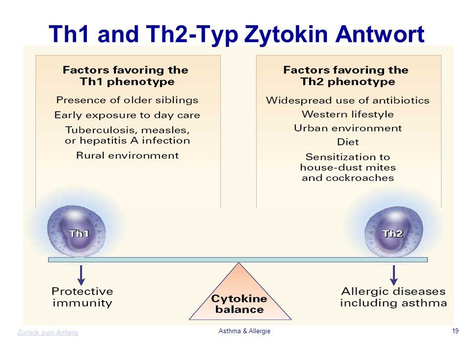 Zurück zum Anfang Asthma & Allergie19 Th1 and Th2-Typ Zytokin Antwort