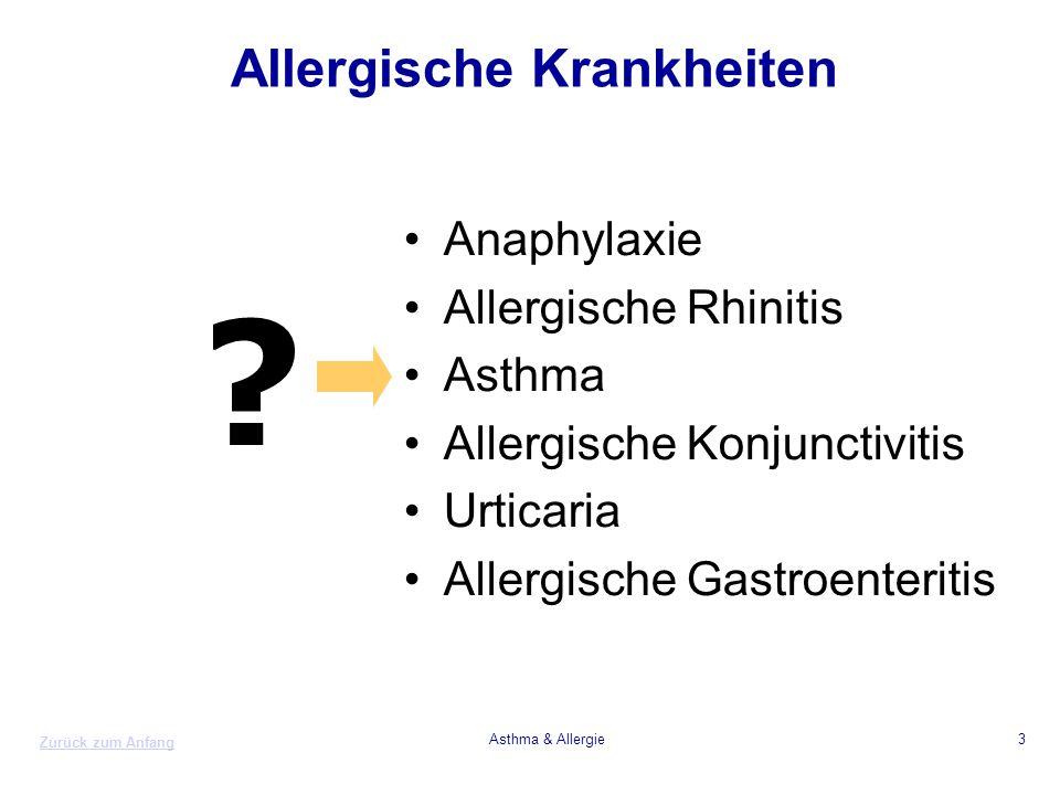 Zurück zum Anfang Asthma & Allergie3 Allergische Krankheiten Anaphylaxie Allergische Rhinitis Asthma Allergische Konjunctivitis Urticaria Allergische