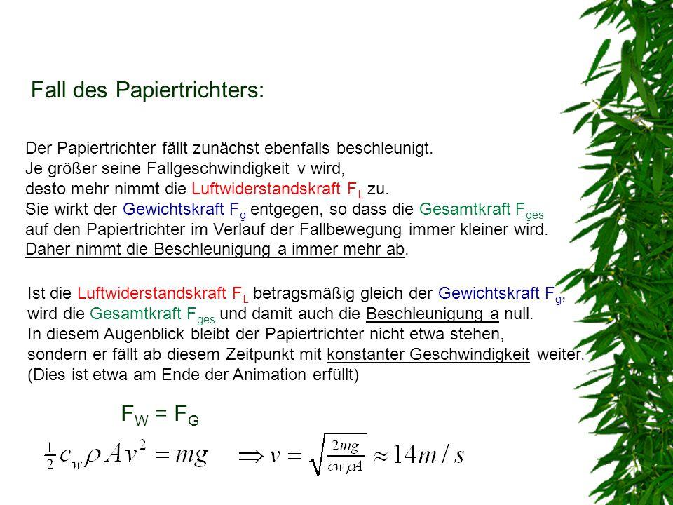 Fall des Papiertrichters: Der Papiertrichter fällt zunächst ebenfalls beschleunigt. Je größer seine Fallgeschwindigkeit v wird, desto mehr nimmt die L