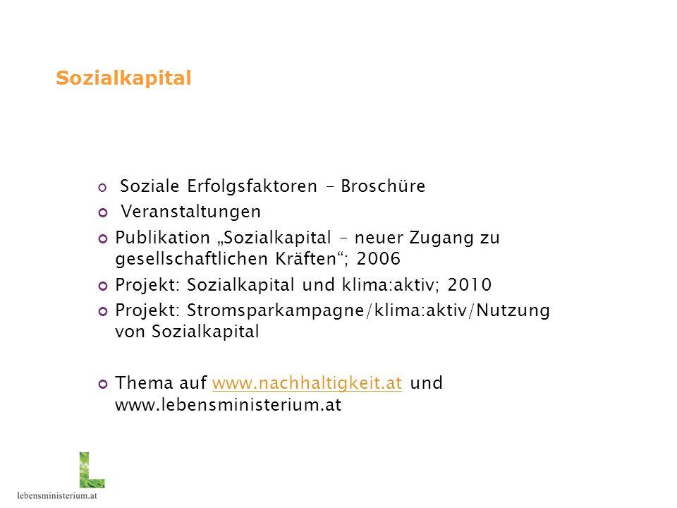 """Sozialkapital Soziale Erfolgsfaktoren - Broschüre Veranstaltungen Publikation """"Sozialkapital – neuer Zugang zu gesellschaftlichen Kräften""""; 2006 Proje"""