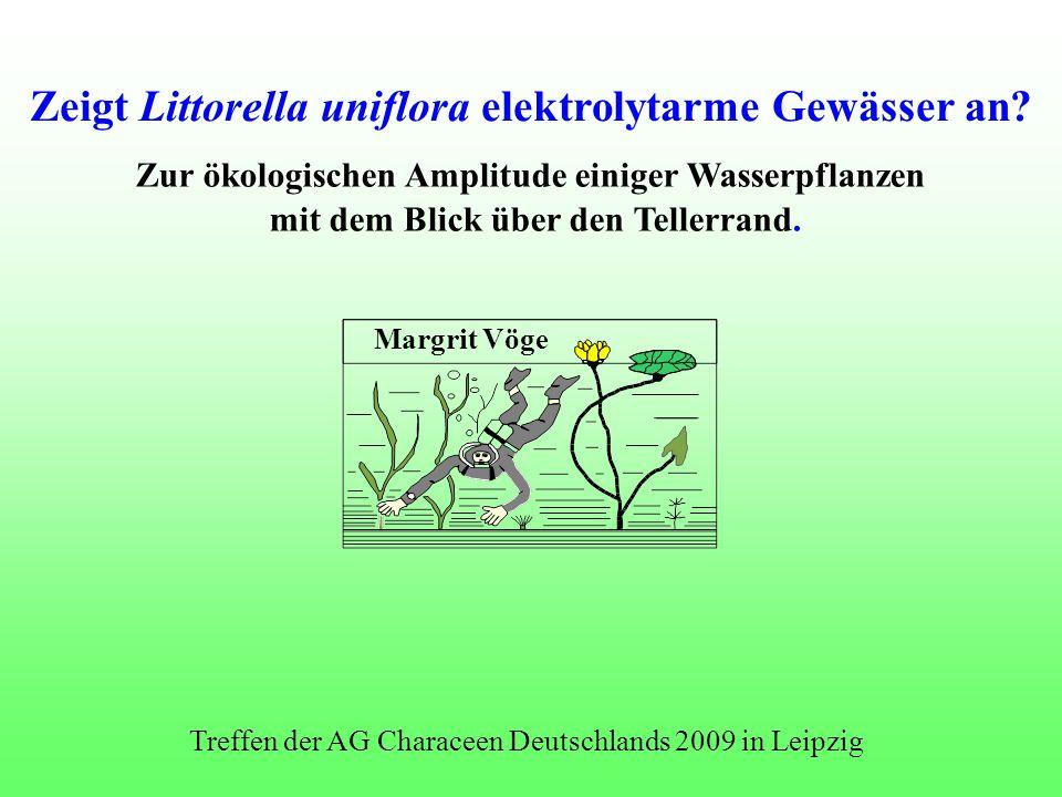 Margrit Vöge Zur ökologischen Amplitude einiger Wasserpflanzen mit dem Blick über den Tellerrand. Zeigt Littorella uniflora elektrolytarme Gewässer an
