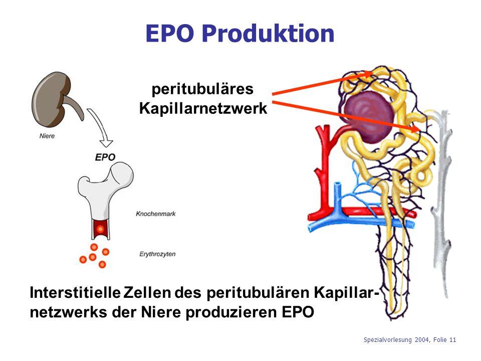Spezialvorlesung 2004, Folie 11 EPO Produktion peritubuläres Kapillarnetzwerk Interstitielle Zellen des peritubulären Kapillar- netzwerks der Niere pr