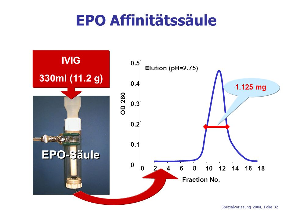 Spezialvorlesung 2004, Folie 32 IVIG 330ml (11.2 g) Elution (pH=2.75) 0 0.1 0.2 0.3 0.4 0.5 024681012141618 Fraction No. OD 280 EPO-Säule EPO Affinitä