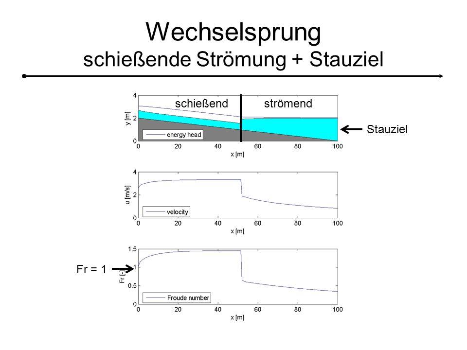 Wechselsprung schießende Strömung + Stauziel Stauziel Fr = 1 schießendströmend