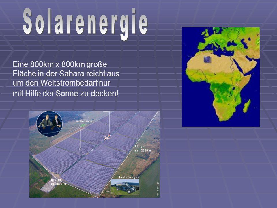 Eine 800km x 800km große Fläche in der Sahara reicht aus um den Weltstrombedarf nur mit Hilfe der Sonne zu decken!