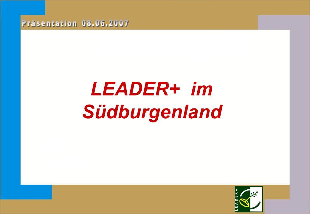 Inhalt: I.Erfahrungen LEADER+ II.LEADER-Projekte III.LEADER - Zukunft