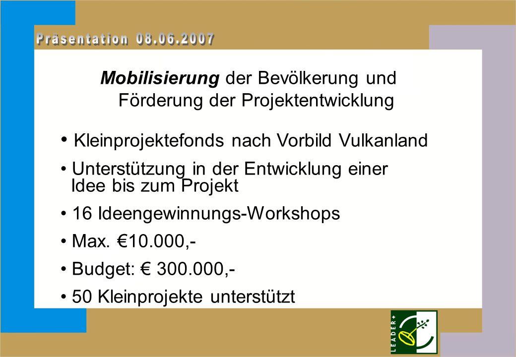 Mobilisierung der Bevölkerung und Förderung der Projektentwicklung Kleinprojektefonds nach Vorbild Vulkanland Unterstützung in der Entwicklung einer Idee bis zum Projekt 16 Ideengewinnungs-Workshops Max.