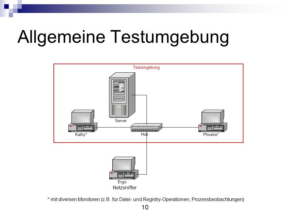 10 Allgemeine Testumgebung * mit diversen Monitoren (z.B.