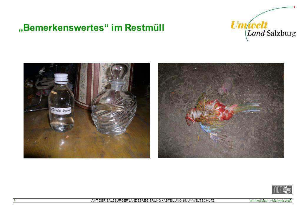 """AMT DER SALZBURGER LANDESREGIERUNG ABTEILUNG 16: UMWELTSCHUTZ 7Wilfried Mayr, Abfallwirtschaft """"Bemerkenswertes"""" im Restmüll"""