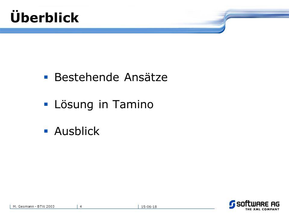 4M. Gesmann - BTW 2003 15-06-18 Überblick  Bestehende Ansätze  Lösung in Tamino  Ausblick