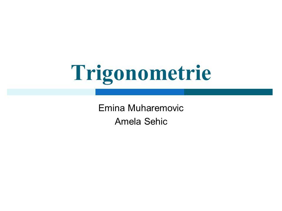Trigonometrie Emina Muharemovic Amela Sehic