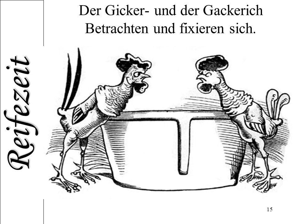 Reifezeit 15 Der Gicker- und der Gackerich Betrachten und fixieren sich.