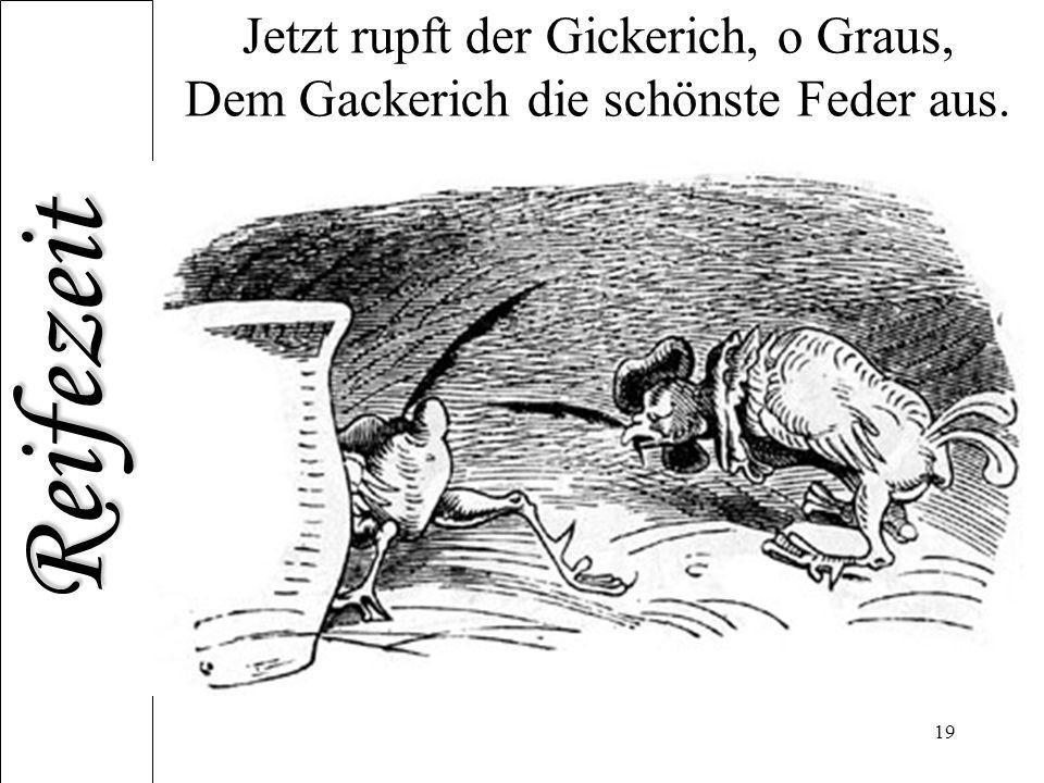 Reifezeit 19 Jetzt rupft der Gickerich, o Graus, Dem Gackerich die schönste Feder aus.