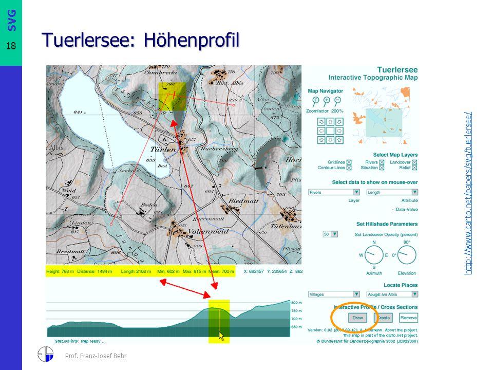 SVG 18 Prof. Franz-Josef Behr Tuerlersee: Höhenprofil http://www.carto.net/papers/svg/tuerlersee/
