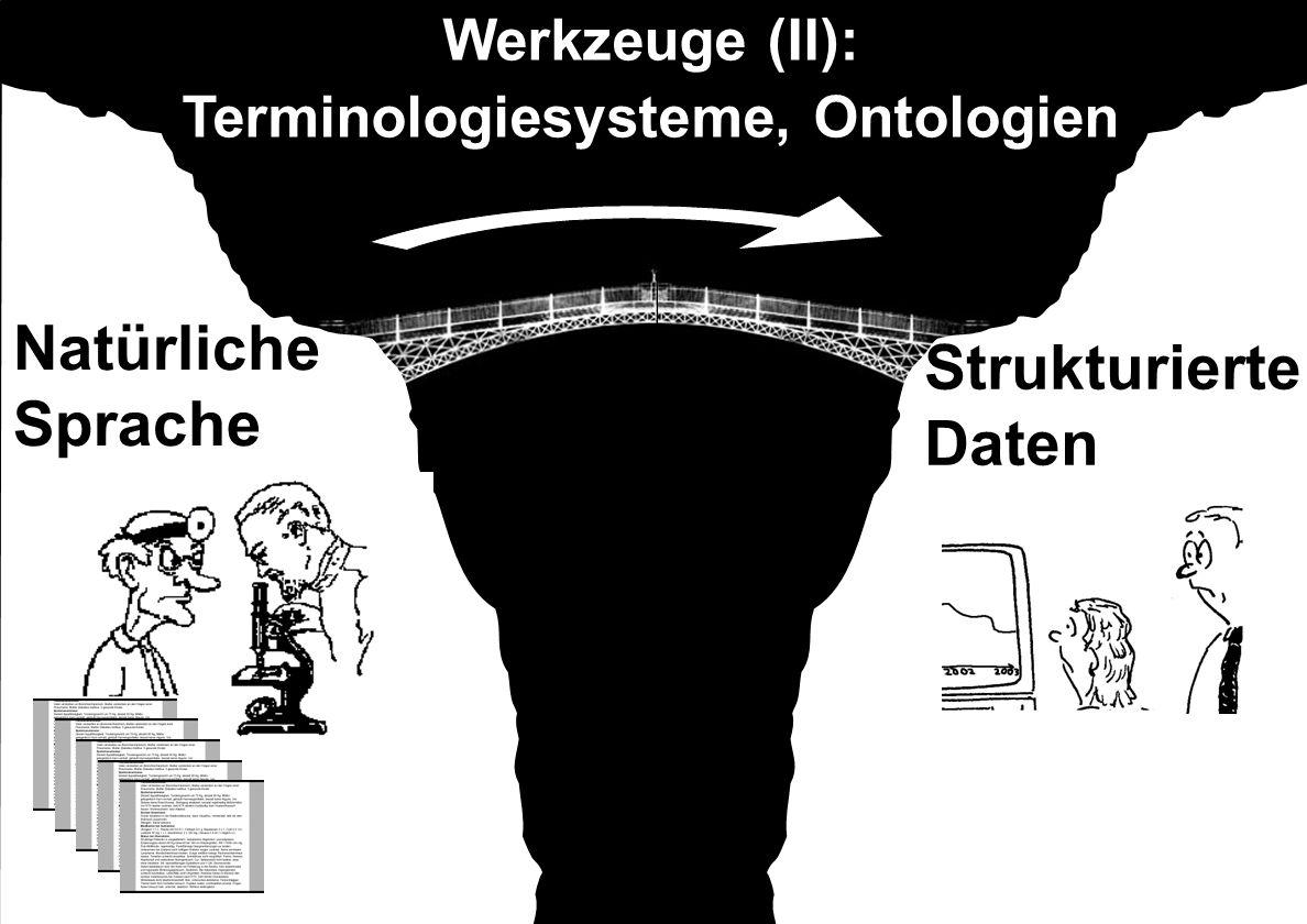 Natürliche Sprache Strukturierte Daten Werkzeuge (II): Terminologiesysteme, Ontologien