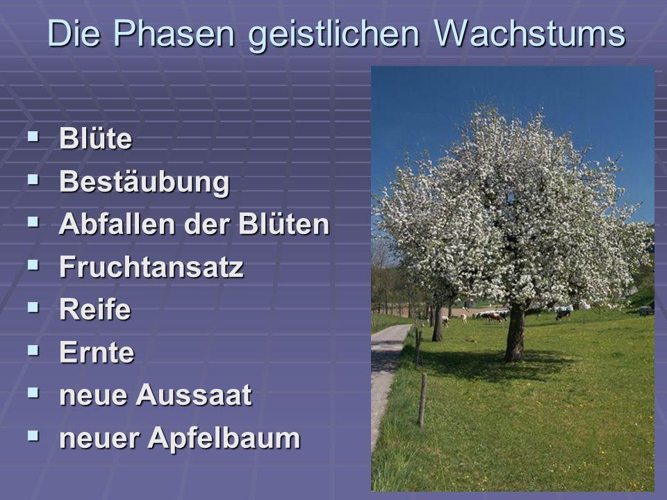  Blüte  Bestäubung  Abfallen der Blüten  Fruchtansatz  Reife  Ernte  neue Aussaat  neuer Apfelbaum Die Phasen geistlichen Wachstums