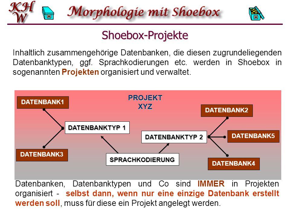 Shoebox-Projekte DATENBANK1 DATENBANK2 DATENBANK5 DATENBANK4 DATENBANK3 PROJEKT XYZ DATENBANKTYP 1 DATENBANKTYP 2 SPRACHKODIERUNG Datenbanken, Datenbanktypen und Co sind IMMER in Projekten organisiert - selbst dann, wenn nur eine einzige Datenbank erstellt werden soll, muss für diese ein Projekt angelegt werden.