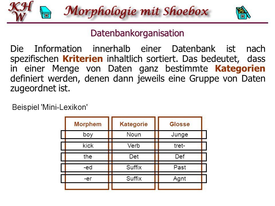 Beispiel Mini-Lexikon Datenbankorganisation boyNounJunge kickVerbtret- theDetDef -edSuffixPast -erSuffixAgnt MorphemKategorieGlosse Die Information innerhalb einer Datenbank ist nach spezifischen Kriterien inhaltlich sortiert.