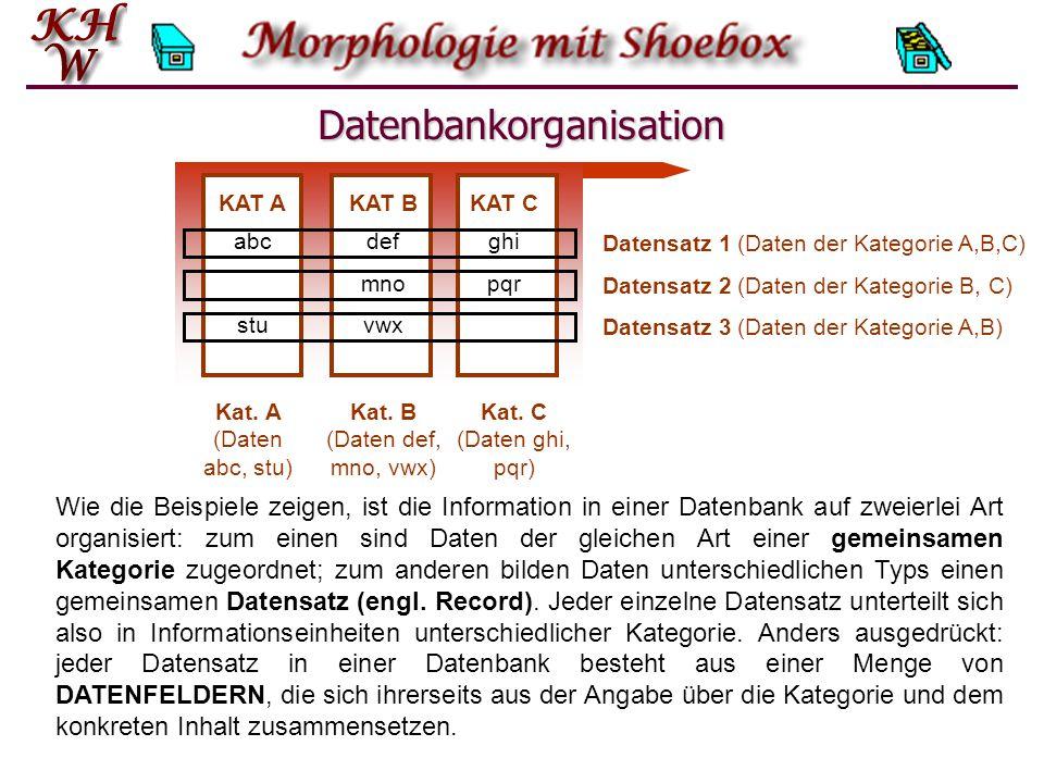 Datenbankorganisation Wie die Beispiele zeigen, ist die Information in einer Datenbank auf zweierlei Art organisiert: zum einen sind Daten der gleichen Art einer gemeinsamen Kategorie zugeordnet; zum anderen bilden Daten unterschiedlichen Typs einen gemeinsamen Datensatz (engl.