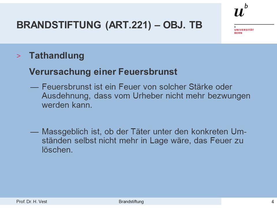 Prof. Dr. H. Vest Brandstiftung 4 BRANDSTIFTUNG (ART.221) – OBJ.