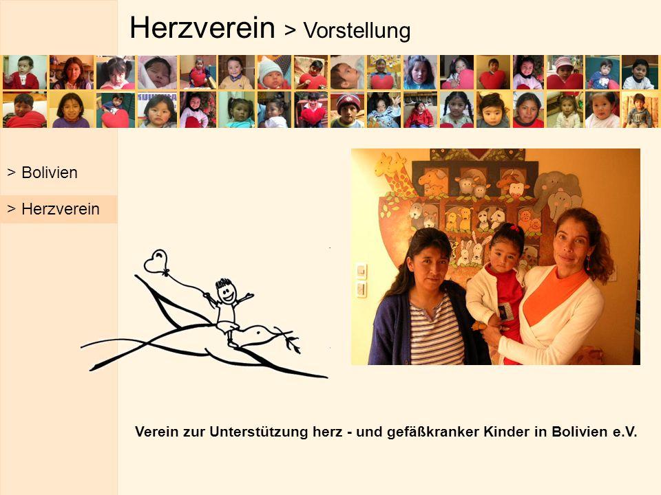 Herzverein > Vorstellung Verein zur Unterstützung herz - und gefäßkranker Kinder in Bolivien e.V. > Bolivien > Herzverein