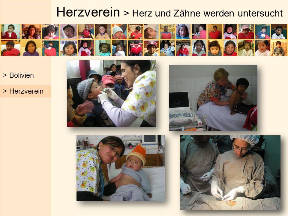 Herzverein > Herz und Zähne werden untersucht > Bolivien > Herzverein