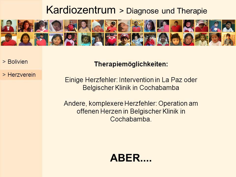 Kardiozentrum > Diagnose und Therapie > Bolivien > Herzverein Therapiemöglichkeiten: Einige Herzfehler: Intervention in La Paz oder Belgischer Klinik