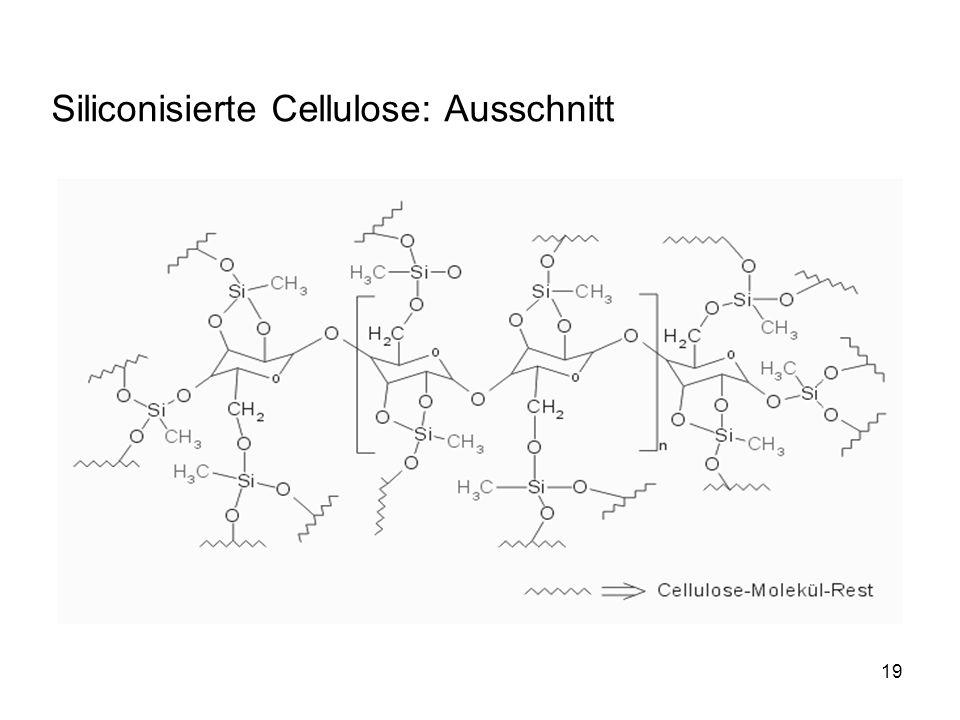 19 Siliconisierte Cellulose: Ausschnitt