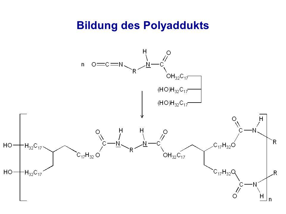 Bildung des Polyaddukts