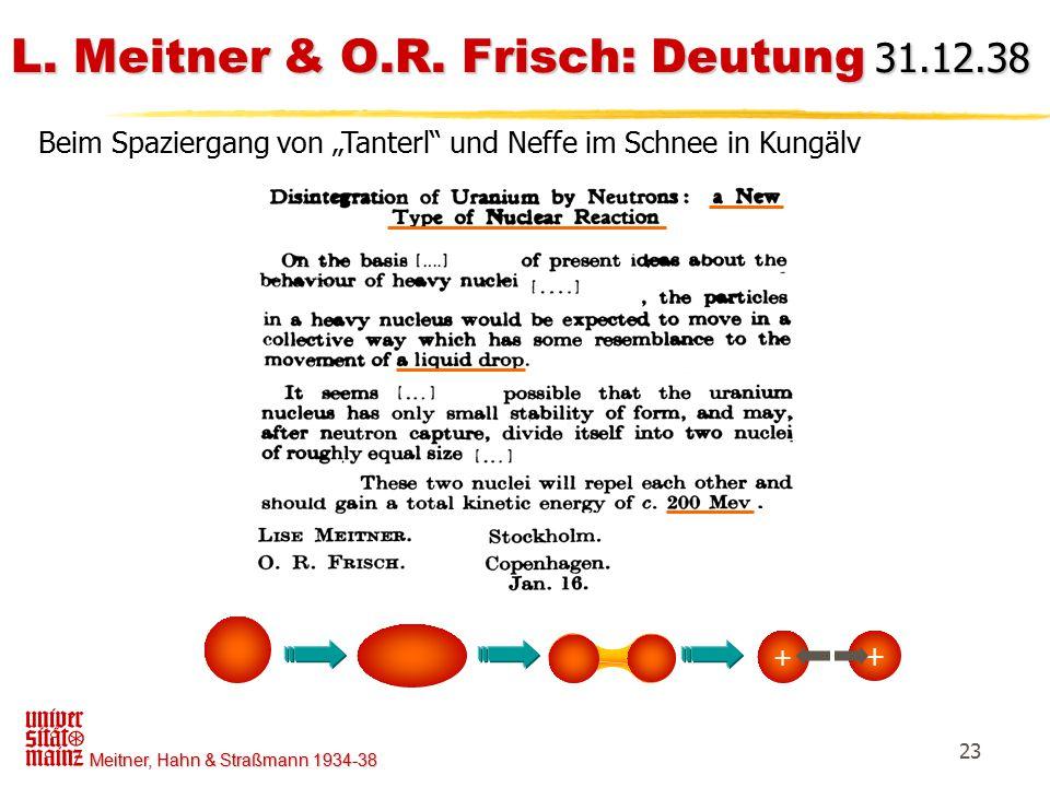 """Meitner, Hahn & Straßmann 1934-38 23 L. Meitner & O.R. Frisch: Deutung 31.12.38 + + Beim Spaziergang von """"Tanterl"""" und Neffe im Schnee in Kungälv"""