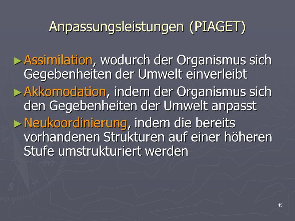19 Anpassungsleistungen (PIAGET) ► Assimilation, wodurch der Organismus sich Gegebenheiten der Umwelt einverleibt ► Akkomodation, indem der Organismus