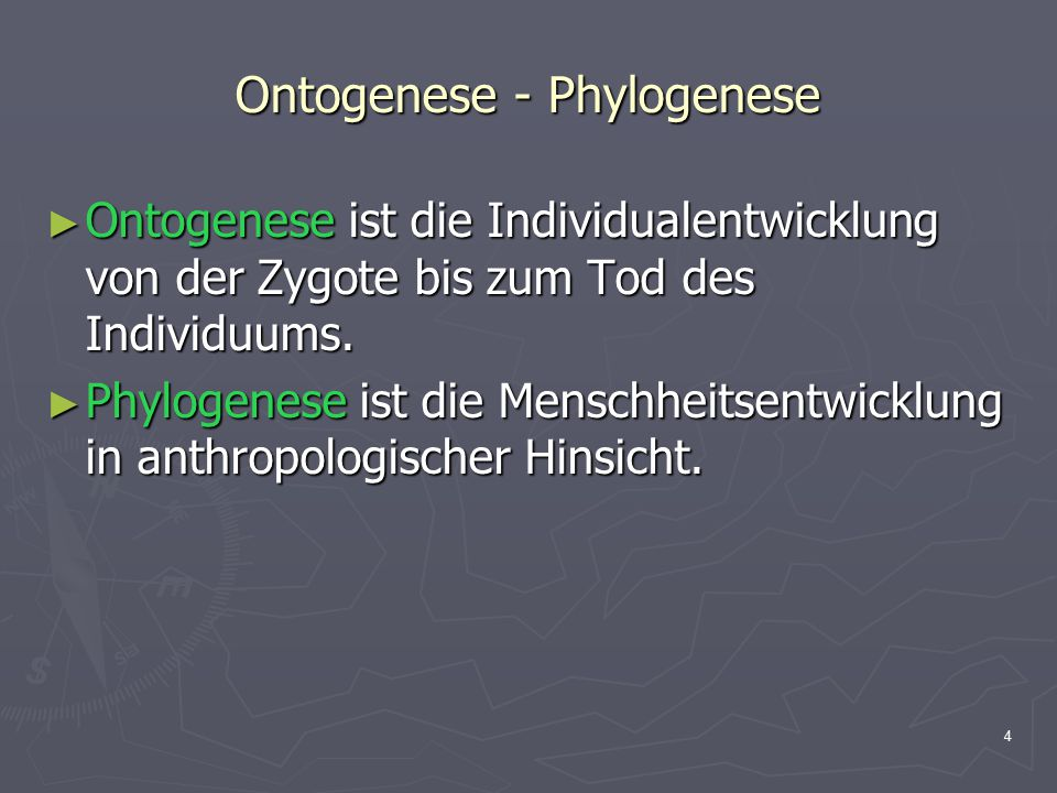 4 Ontogenese - Phylogenese ► Ontogenese ist die Individualentwicklung von der Zygote bis zum Tod des Individuums. ► Phylogenese ist die Menschheitsent