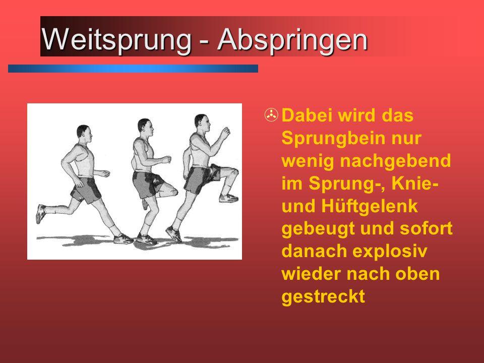 Weitsprung - Abspringen >Dabei wird das Sprungbein nur wenig nachgebend im Sprung-, Knie- und Hüftgelenk gebeugt und sofort danach explosiv wieder nach oben gestreckt