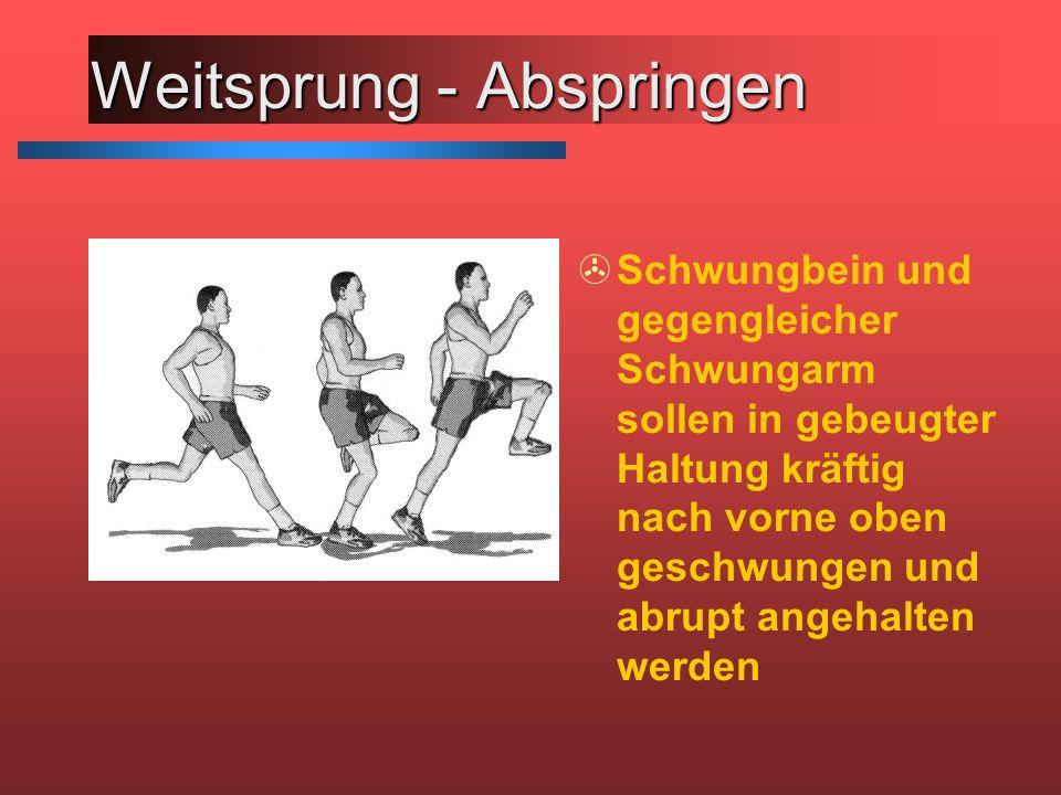 Weitsprung - Abspringen >Schwungbein und gegengleicher Schwungarm sollen in gebeugter Haltung kräftig nach vorne oben geschwungen und abrupt angehalte